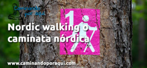 Nordic walking o caminata nórdica